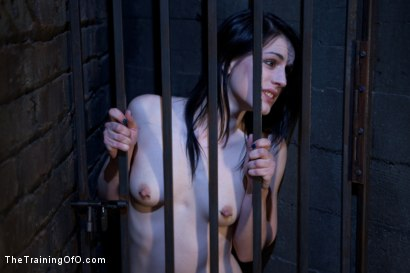 Photo number 1 from Slave Training of Katherine Cane<br>Day 1 shot for The Training Of O on Kink.com. Featuring Katharine Cane in hardcore BDSM & Fetish porn.