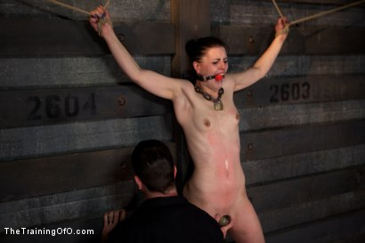 Photo number 13 from Training Katherine Kane Day 2 shot for The Training Of O on Kink.com. Featuring Katharine Cane in hardcore BDSM & Fetish porn.