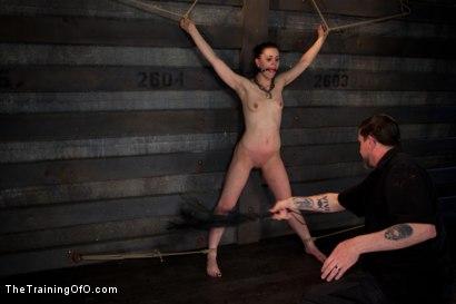 Photo number 14 from Training Katherine Kane Day 2 shot for The Training Of O on Kink.com. Featuring Katharine Cane in hardcore BDSM & Fetish porn.