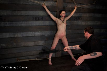Photo number 14 from Training Katherine Kane Day 2 shot for The Training Of O on Kink.com. Featuring Katharine Cane in hardcore BDSM & Fetish porn.