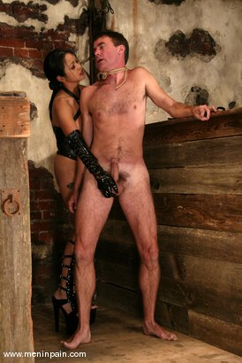 Photo number 4 from Mika Tan and Wild Bill shot for Men In Pain on Kink.com. Featuring Mika Tan and Wild Bill in hardcore BDSM & Fetish porn.
