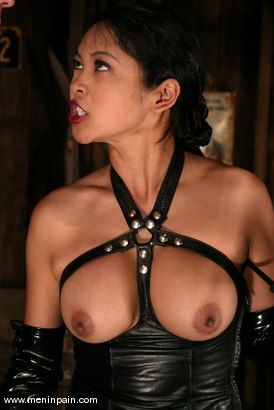 Photo number 7 from Mika Tan and Wild Bill shot for Men In Pain on Kink.com. Featuring Mika Tan and Wild Bill in hardcore BDSM & Fetish porn.