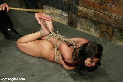 Photo number 5 from DragonLily and Jade Marxxx shot for Hogtied on Kink.com. Featuring DragonLily and Jade Marxxx in hardcore BDSM & Fetish porn.