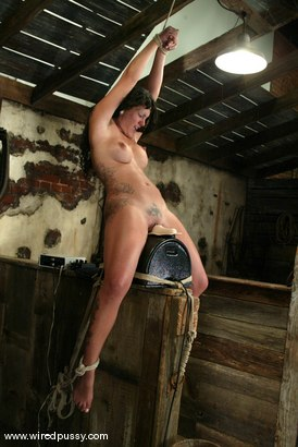 clit Clamp on