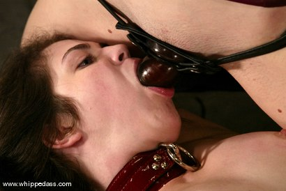 Photo number 14 from Chanta-Rose and Faith Leon shot for Whipped Ass on Kink.com. Featuring Faith Leon and Chanta-Rose in hardcore BDSM & Fetish porn.