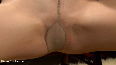 Photo number 5 from Lorelei Lee's Pantyhose Worship POV Bonus! shot for Divine Bitches on Kink.com. Featuring Lorelei Lee in hardcore BDSM & Fetish porn.
