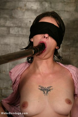 Photo number 7 from Lynn Dumaire shot for Water Bondage on Kink.com. Featuring Lynn Dumaire in hardcore BDSM & Fetish porn.