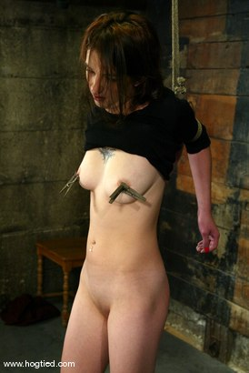 Photo number 1 from Lynn Dumaire shot for Hogtied on Kink.com. Featuring Lynn Dumaire in hardcore BDSM & Fetish porn.