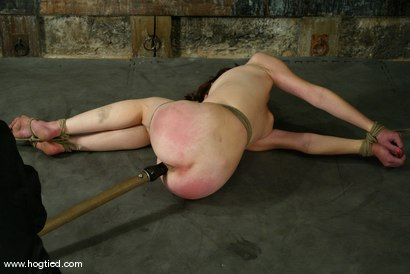 Photo number 13 from Lynn Dumaire shot for Hogtied on Kink.com. Featuring Lynn Dumaire in hardcore BDSM & Fetish porn.