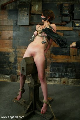 Photo number 6 from Lynn Dumaire shot for Hogtied on Kink.com. Featuring Lynn Dumaire in hardcore BDSM & Fetish porn.