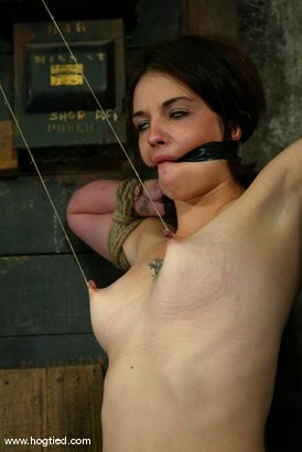 Photo number 7 from Lynn Dumaire shot for Hogtied on Kink.com. Featuring Lynn Dumaire in hardcore BDSM & Fetish porn.