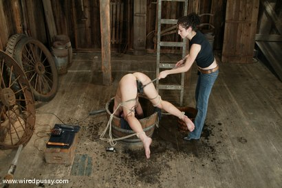 Photo number 7 from Cami shot for Wired Pussy on Kink.com. Featuring Cami in hardcore BDSM & Fetish porn.