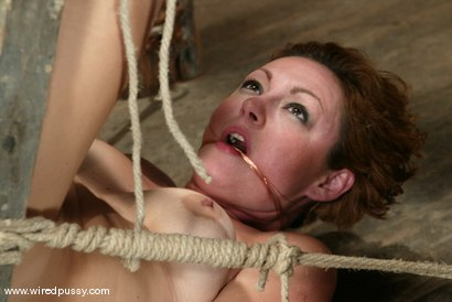 Photo number 12 from Cami shot for Wired Pussy on Kink.com. Featuring Cami in hardcore BDSM & Fetish porn.