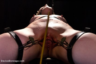 Photo number 9 from Sarah Shevon Suffers - Live Show Part 1 shot for Device Bondage on Kink.com. Featuring Sarah Shevon in hardcore BDSM & Fetish porn.
