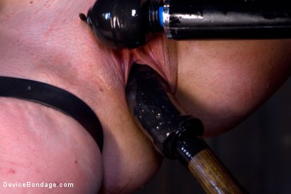 Photo number 7 from Sarah Shevon Suffers - Live Show Part 2 shot for Device Bondage on Kink.com. Featuring Sarah Shevon in hardcore BDSM & Fetish porn.