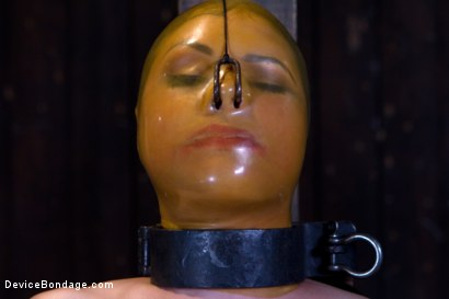 Photo number 3 from Sarah Shevon Suffers - Live Show Part 3 shot for Device Bondage on Kink.com. Featuring Sarah Shevon in hardcore BDSM & Fetish porn.