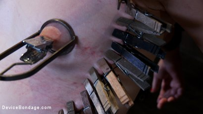 Photo number 7 from Sarah Shevon Suffers - Live Show Part 3 shot for Device Bondage on Kink.com. Featuring Sarah Shevon in hardcore BDSM & Fetish porn.