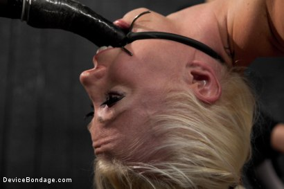 Photo number 14 from Lorelei Lee is Bent in Unforgiving Device Bondage shot for Device Bondage on Kink.com. Featuring Lorelei Lee in hardcore BDSM & Fetish porn.