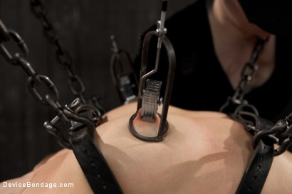 Photo number 15 from Lorelei Lee is Bent in Unforgiving Device Bondage shot for Device Bondage on Kink.com. Featuring Lorelei Lee in hardcore BDSM & Fetish porn.