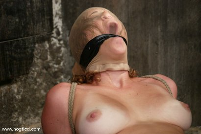 Photo number 11 from Lola shot for Hogtied on Kink.com. Featuring Lola in hardcore BDSM & Fetish porn.