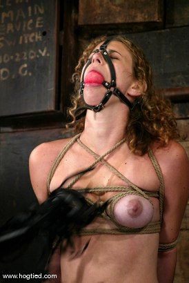 Photo number 13 from Lola shot for Hogtied on Kink.com. Featuring Lola in hardcore BDSM & Fetish porn.