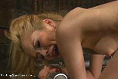 """Photo number 13 from """"Fuck 3 Machines, Squirt, Fist, Got it"""": Sexy 20 yr old fucking w/a Circuit of Sex Machines  shot for Fucking Machines on Kink.com. Featuring Tiffany Fox in hardcore BDSM & Fetish porn."""