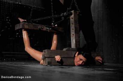Photo number 4 from Beretta James Completely Objectified on DeviceBondage.com shot for Device Bondage on Kink.com. Featuring Beretta James in hardcore BDSM & Fetish porn.