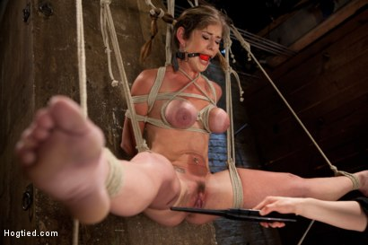 Photo number 9 from Part 1 - Felony Live Show - Most Flexible MILF shot for Hogtied on Kink.com. Featuring Felony in hardcore BDSM & Fetish porn.