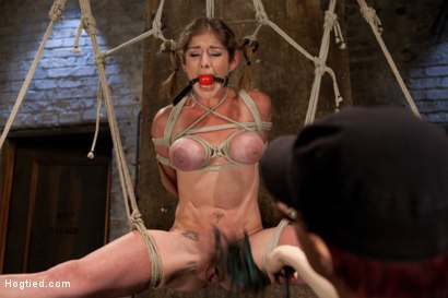 Photo number 12 from Part 1 - Felony Live Show - Most Flexible MILF shot for Hogtied on Kink.com. Featuring Felony in hardcore BDSM & Fetish porn.