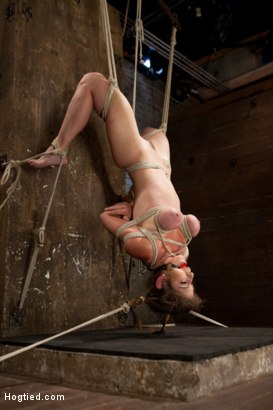 Photo number 5 from Part 1 - Felony Live Show - Most Flexible MILF shot for Hogtied on Kink.com. Featuring Felony in hardcore BDSM & Fetish porn.