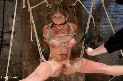 Photo number 7 from Part 1 - Felony Live Show - Most Flexible MILF shot for Hogtied on Kink.com. Featuring Felony in hardcore BDSM & Fetish porn.