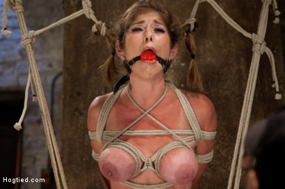 Photo number 8 from Part 1 - Felony Live Show - Most Flexible MILF shot for Hogtied on Kink.com. Featuring Felony in hardcore BDSM & Fetish porn.