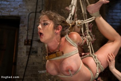 Photo number 12 from Part 2 - Felony Live Show - Most Flexible MILF shot for Hogtied on Kink.com. Featuring Felony in hardcore BDSM & Fetish porn.