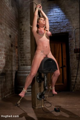 Photo number 3 from Part 3 - Felony Live Show - Most Flexible MILF shot for Hogtied on Kink.com. Featuring Felony in hardcore BDSM & Fetish porn.