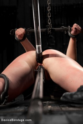Photo number 8 from Sofia Lauryn - Punished Princess - First ANAL Scene! shot for Device Bondage on Kink.com. Featuring Sofia Lauryn in hardcore BDSM & Fetish porn.