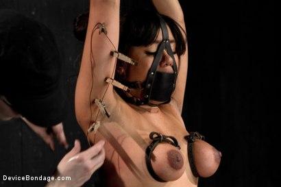 Photo number 8 from Annie Cruz - Bitch in Heat shot for Device Bondage on Kink.com. Featuring Annie Cruz in hardcore BDSM & Fetish porn.