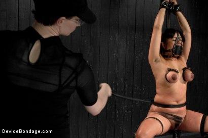 Photo number 10 from Annie Cruz - Bitch in Heat shot for Device Bondage on Kink.com. Featuring Annie Cruz in hardcore BDSM & Fetish porn.