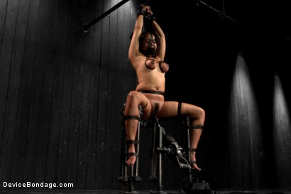 Photo number 12 from Annie Cruz - Bitch in Heat shot for Device Bondage on Kink.com. Featuring Annie Cruz in hardcore BDSM & Fetish porn.