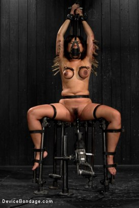 Photo number 7 from Annie Cruz - Bitch in Heat shot for Device Bondage on Kink.com. Featuring Annie Cruz in hardcore BDSM & Fetish porn.