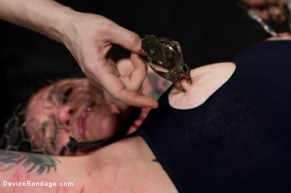 Photo number 7 from Kathryn Dupri Submits to Leather Restraint shot for Device Bondage on Kink.com. Featuring Kathryn Dupri in hardcore BDSM & Fetish porn.
