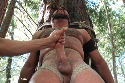 Photo number 4 from Bound Gods Dom Josh West Gets Edged Deep in the Woods shot for Men On Edge on Kink.com. Featuring Josh West in hardcore BDSM & Fetish porn.