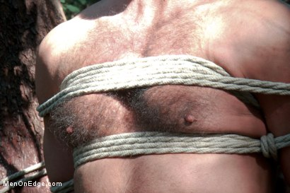 Photo number 8 from Bound Gods Dom Josh West Gets Edged Deep in the Woods shot for Men On Edge on Kink.com. Featuring Josh West in hardcore BDSM & Fetish porn.