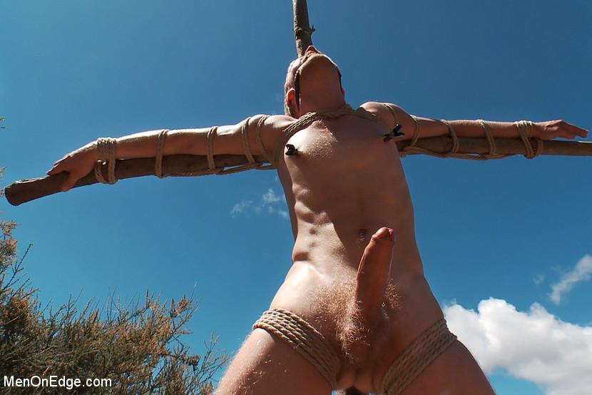 you husband bondage dildo seems very good idea