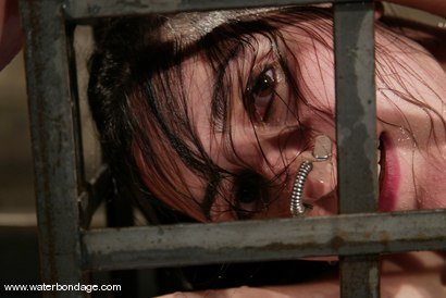 Photo number 13 from Haydee shot for Water Bondage on Kink.com. Featuring Haydee in hardcore BDSM & Fetish porn.