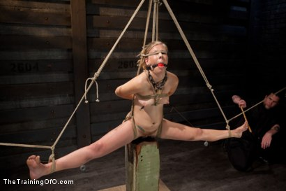 Photo number 11 from Slave Training of Chastity Lynn<br>Day 1-Finding her purpose shot for The Training Of O on Kink.com. Featuring Chastity Lynn in hardcore BDSM & Fetish porn.