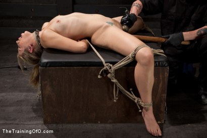 Photo number 12 from Slave Training of Chastity Lynn<br>Day 1-Finding her purpose shot for The Training Of O on Kink.com. Featuring Chastity Lynn in hardcore BDSM & Fetish porn.
