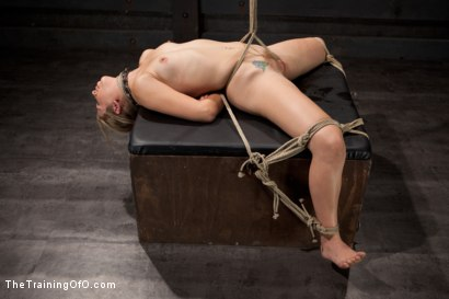 Photo number 15 from Slave Training of Chastity Lynn<br>Day 1-Finding her purpose shot for The Training Of O on Kink.com. Featuring Chastity Lynn in hardcore BDSM & Fetish porn.