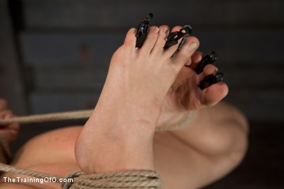 Photo number 1 from Training Chastity Lynn-Day 2 shot for The Training Of O on Kink.com. Featuring Chastity Lynn in hardcore BDSM & Fetish porn.