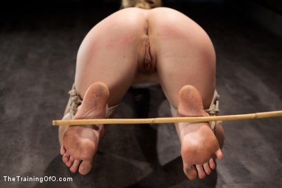 Photo number 12 from Training Chastity Lynn-Day 2 shot for The Training Of O on Kink.com. Featuring Chastity Lynn in hardcore BDSM & Fetish porn.