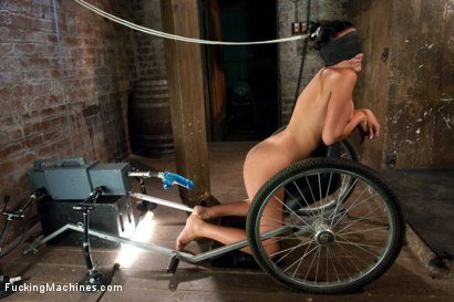 Photo number 11 from IF Harmony Rose & Charley Chase had a Baby the result would be Courtney Cox or Ashli Ames  shot for Fucking Machines on Kink.com. Featuring Ashli Ames in hardcore BDSM & Fetish porn.